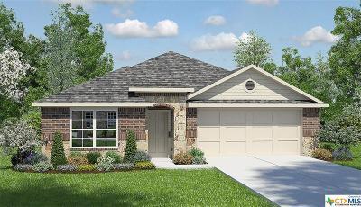 Kyle Single Family Home For Sale: 113 Dusky Thrush Drive