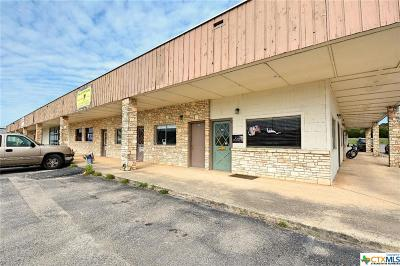 Commercial Lease For Lease: 1175 Fm 2673 #124