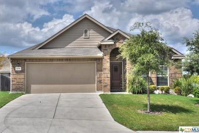 New Braunfels Rental For Rent: 1658 Sunspur Drive