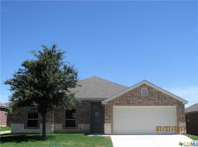 Bell County, Coryell County, Lampasas County Single Family Home For Sale: 916 Paseo Del Plata