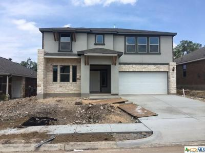 San Marcos Single Family Home Pending Take Backups: 236 Mary Max Circle