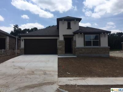 San Marcos Single Family Home Pending Take Backups: 241 Mary Max Circle