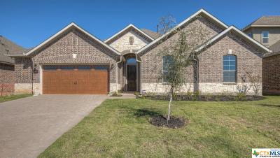 San Marcos TX Single Family Home For Sale: $397,900