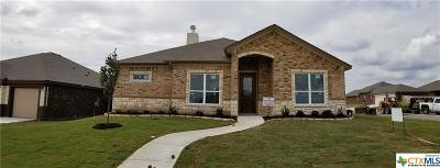 Temple TX Single Family Home For Sale: $224,900