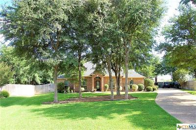 Belton Single Family Home For Sale: 3404 Spinnaker Lane