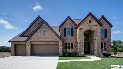San Antonio Single Family Home For Sale: 9010 Warbler Creek