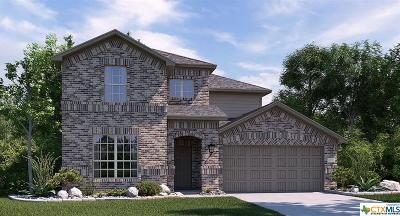 New Braunfels Single Family Home For Sale: 5640 Briar Field