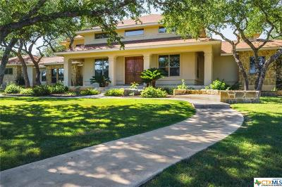 San Marcos Single Family Home For Sale: 2911 Summit Ridge