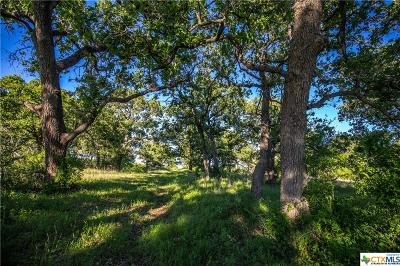 Seguin Residential Lots & Land For Sale: 2720 Elm Creek