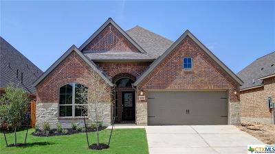 San Antonio Single Family Home For Sale: 14514 Bald Eagle Lane