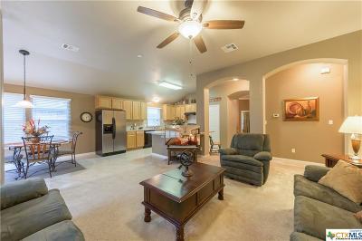Buda Single Family Home For Sale: 210 Desert Quail