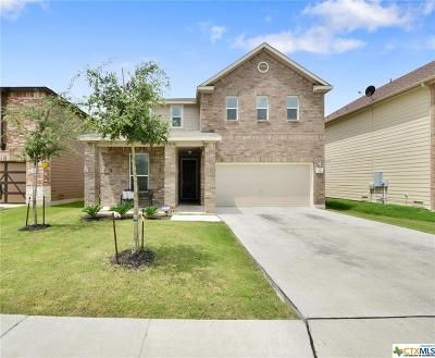 New Braunfels Single Family Home For Sale: 3834 Legend Hill