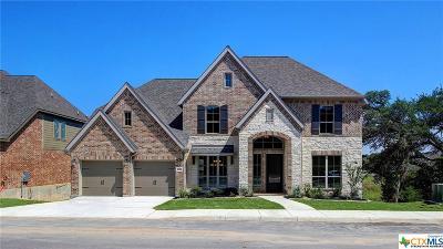 San Antonio Single Family Home For Sale: 25522 River Ledge