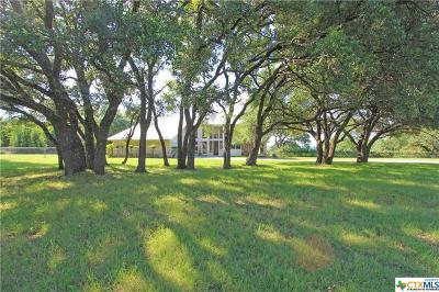 Belton Single Family Home Pending Take Backups: 960 George Wilson Road