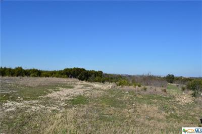 Belton TX Commercial For Sale: $499,000