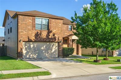 San Marcos Single Family Home Pending Take Backups: 272 Cordero