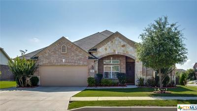 Cibolo Single Family Home For Sale: 614 Oakmont Way