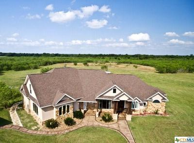 Guadalupe County Single Family Home For Sale: 477 Strey