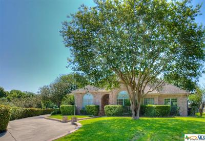 New Braunfels Single Family Home For Sale: 180 Country Grace