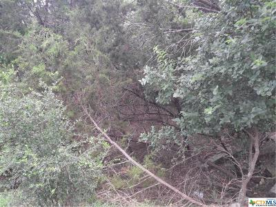 Canyon Lake Residential Lots & Land For Sale: 847 Green Castle Place