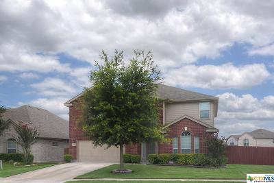 Cibolo Single Family Home For Sale: 409 Zoeller
