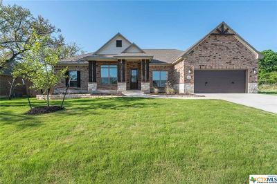 Belton Single Family Home For Sale: 2169 Dunns Hollow Drive