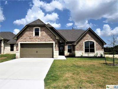 Bell County Single Family Home For Sale: 2927 Crystal Ann Drive