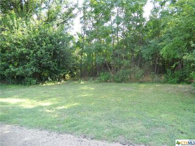 Belton Residential Lots & Land For Sale: 4441 Blue Ridge Dr.