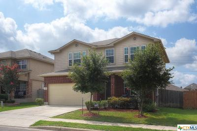Cibolo Single Family Home For Sale: 225 Arcadia Place