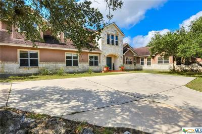 San Antonio Single Family Home For Sale: 27844 Smithson Valley Road