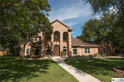 Belton Single Family Home For Sale: 4220 Lago Vista