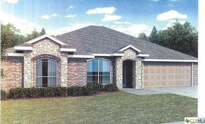 Belton Single Family Home For Sale: 917 Liberty Park