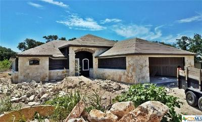 Belton Single Family Home For Sale: 152 Fort Donelson Drive