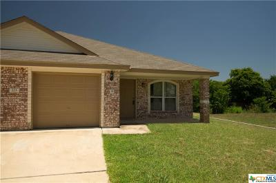Harker Heights Multi Family Home For Sale: 223 Dale Earnhardt