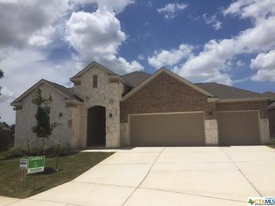 New Braunfels Single Family Home For Sale: 5611 Strimple Street