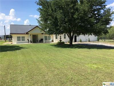Seguin Single Family Home For Sale: 641 Weber Rd.
