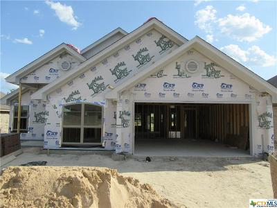 Bell County, Coryell County, Lampasas County Single Family Home For Sale: 3415 Crystal Ann