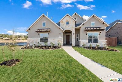 San Antonio Single Family Home For Sale: 23134 Evangeline