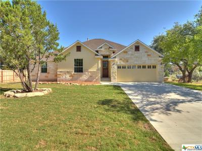 Wimberley Single Family Home For Sale: 32 Ridgewood