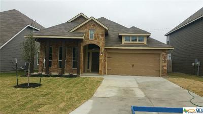 Bell County, Coryell County, Lampasas County Single Family Home For Sale: 1517 Hillside Drive Road