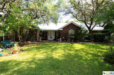 Salado Single Family Home For Sale: 3926 Lorli Lane