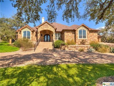 Georgetown Single Family Home For Sale: 208 Venezia