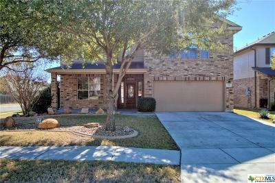 Cibolo Single Family Home For Sale: 329 Sorenstam