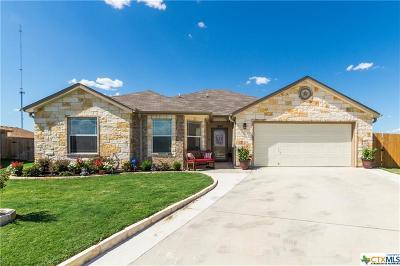 Belton Single Family Home For Sale: 1847 Huey Drive
