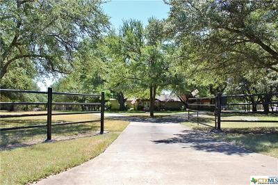 Belton Single Family Home For Sale: 74 Cedar Trails