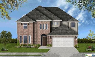 San Antonio Single Family Home For Sale: 23111 Evangeline