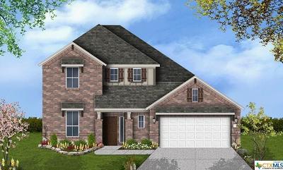 San Antonio Single Family Home For Sale: 23122 Evangeline