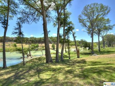 Hays County Single Family Home For Sale: 1920 River