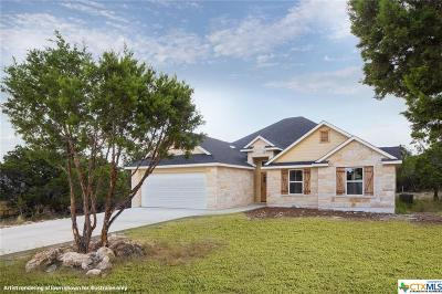 Wimberley Single Family Home For Sale: 2 Rock Hollow Circle