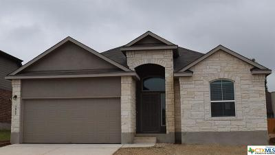 New Braunfels Single Family Home For Sale: 2069 Flintshire